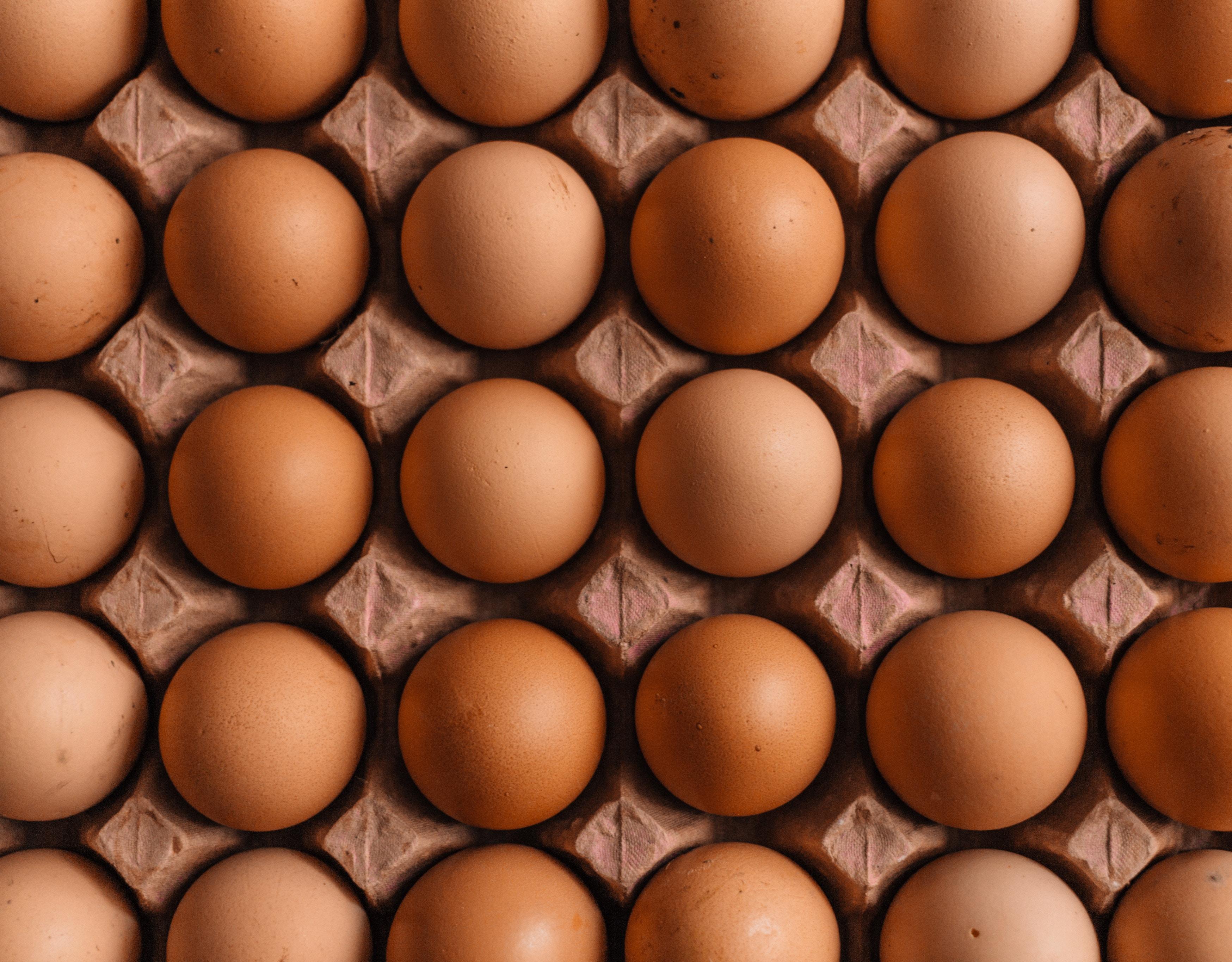 ägg-som-håller-mycket-länge-i-kylen